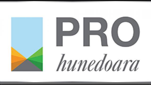 Pro Hunedoara